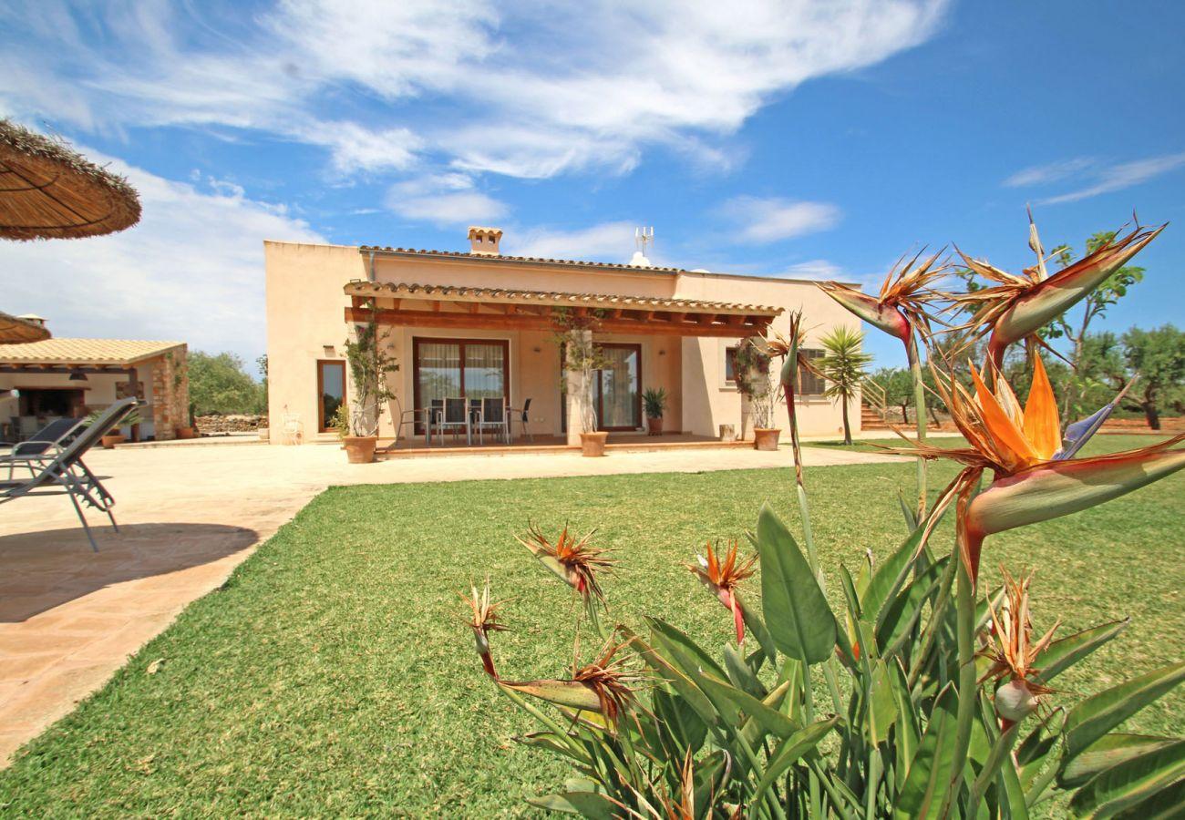 Country house in Felanitx - Finca Ses Figueretes - Cala Sa Nau beach - Air.Con