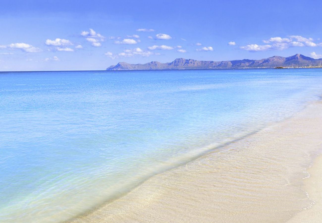 photo of the bay of alcudia