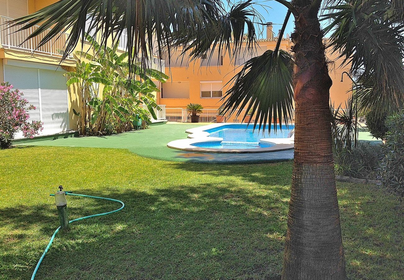Photo of the swimming pool of the apartment in Can Picafort