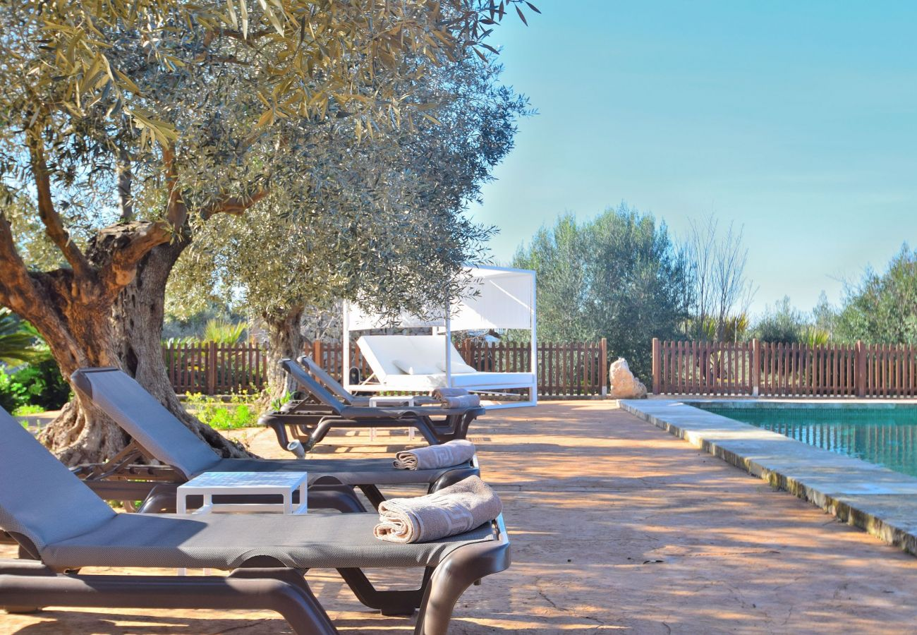 Picture of the swimming pool area of the villa in Sineu