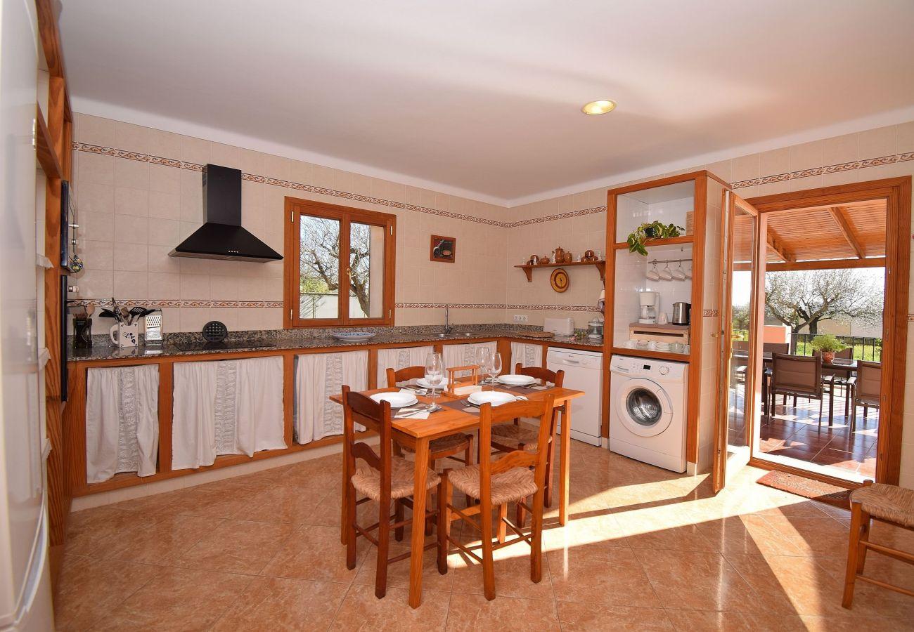 Country house in Binissalem - Sa Vinyeta Binissalem 504