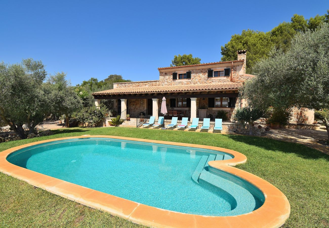 holidays, peace and quiet, swimming pool, nature