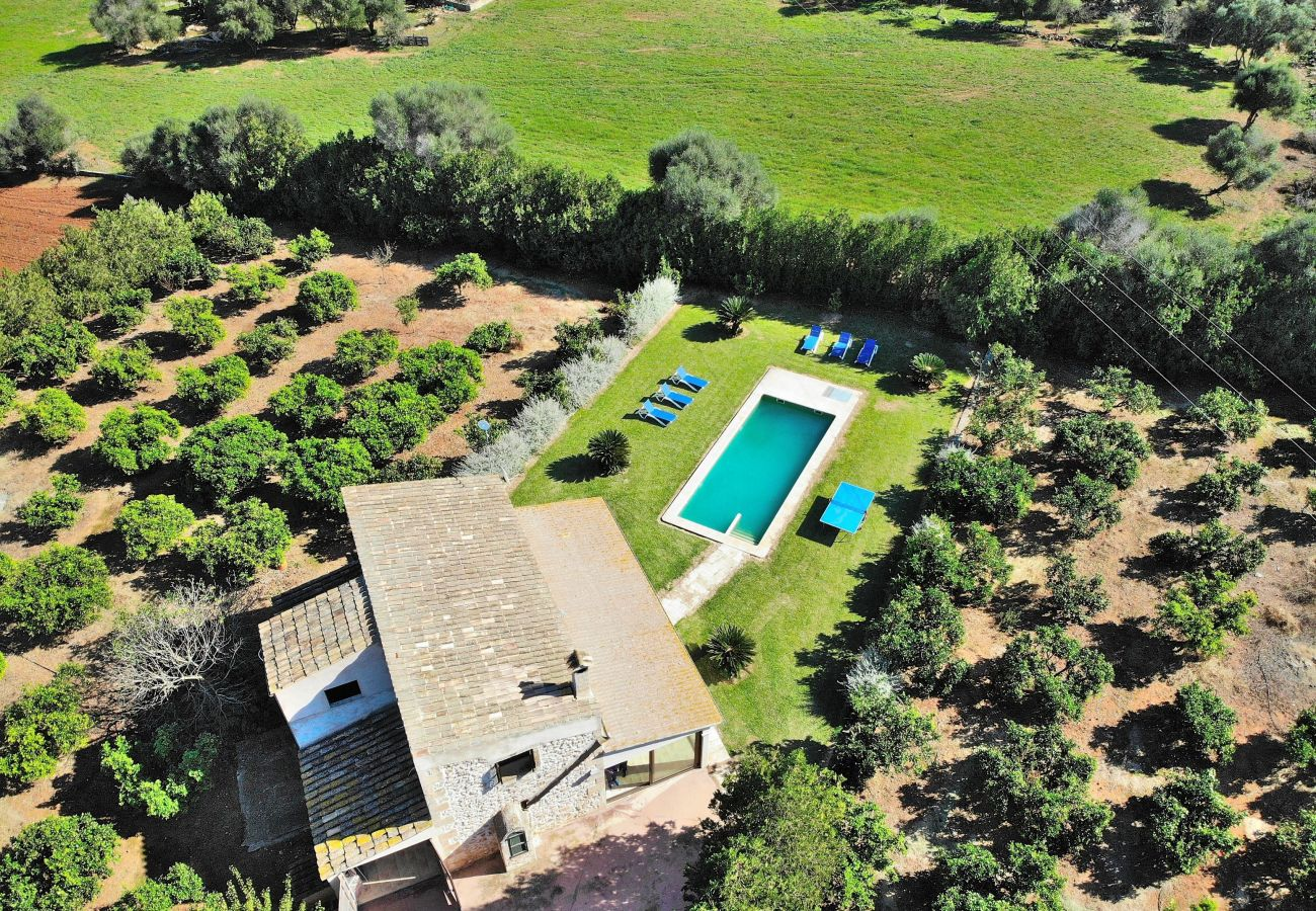 Country house in Can Picafort - Son Morey Tarongers 108